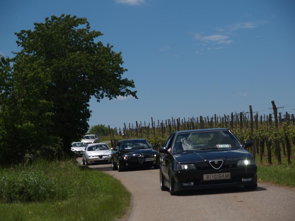 8. Fešta Alfa Romeo – srečanje Kraških Gadov